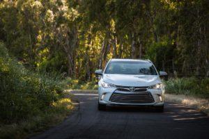 Toyota Camry в количестве 50 шт найдены в Челябинском лесу.