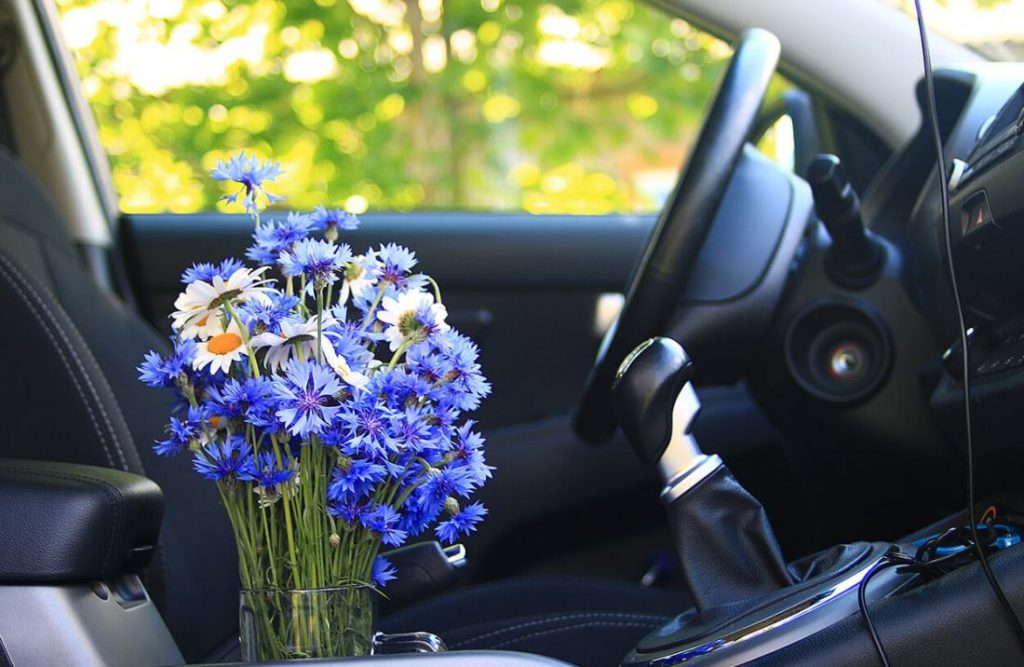 Запах нового автомобиля